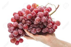 vinograd_protiv_raka